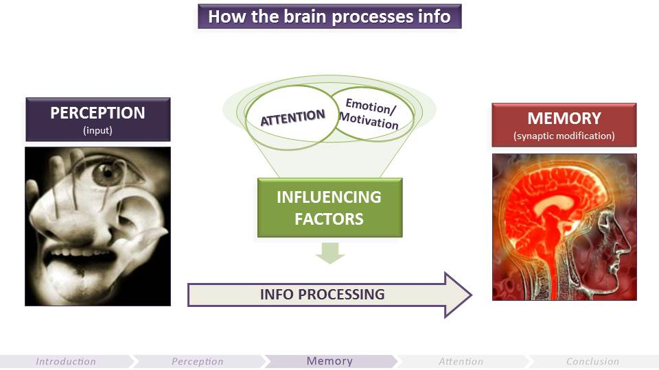 How Memory Processes Information | Video Game UX