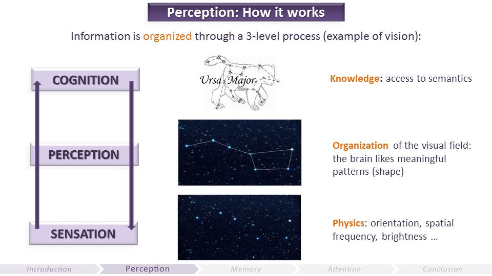 Perception - How it Works | Video Game UX