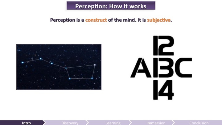 How Perception Works