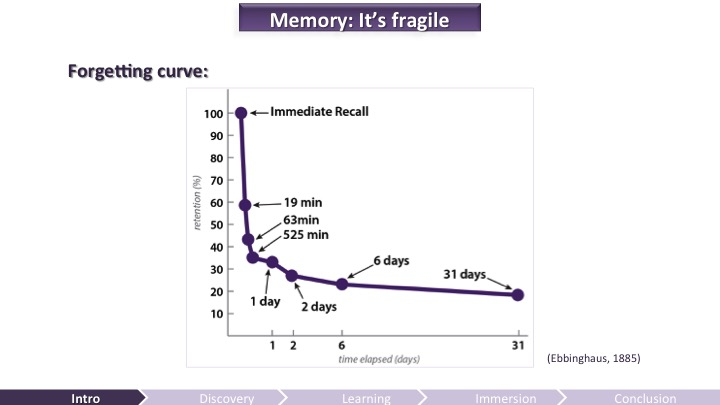 Memory is Fragile